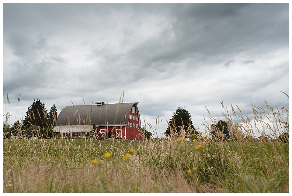 Red-Barn-Studios- wedding-Chehalis 001