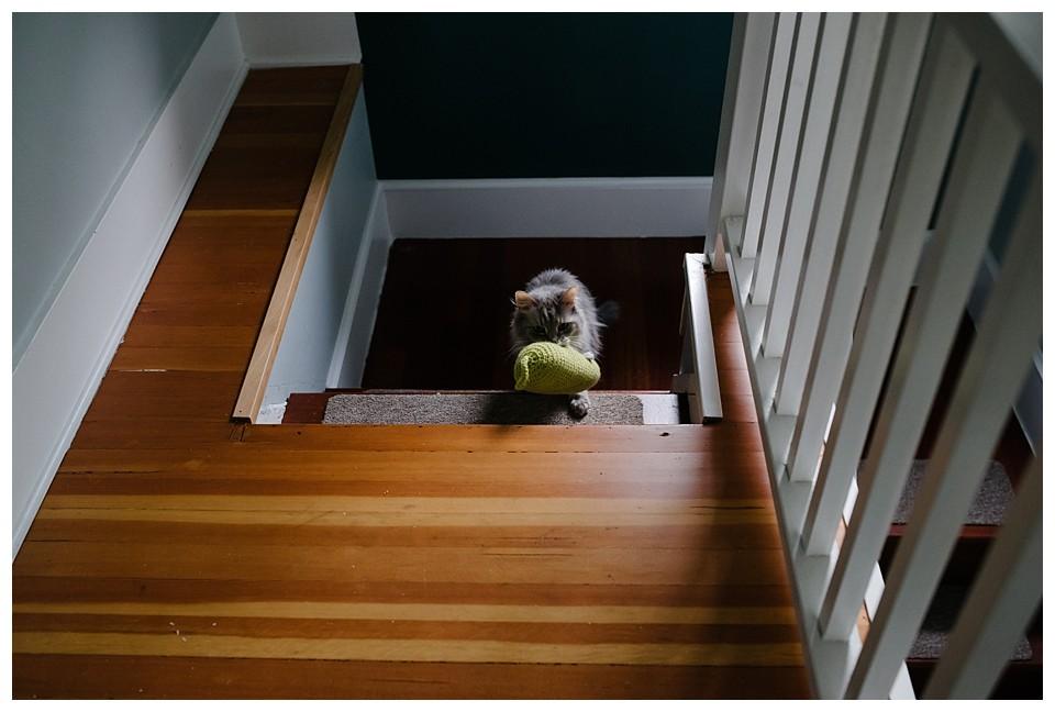 Seattle Documentary Family Photographer_0140.jpg