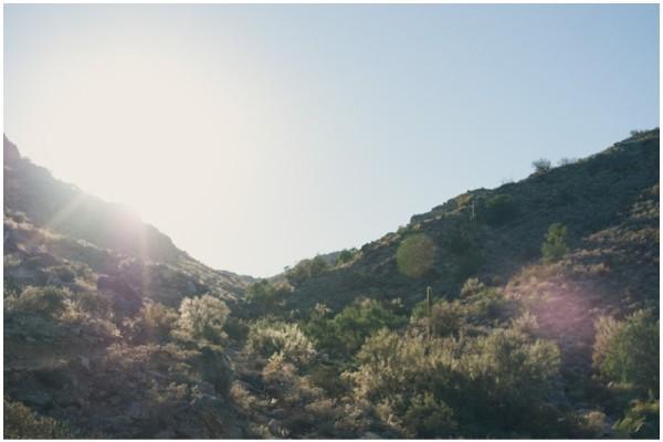 Dreaming of the desert {Brea Family Photographer/ Tacoma Family Lifestyle photographer}